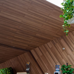 Parklex Walls and Ceilings Dry Internal | Eucalyptus | Chapas | Parklex