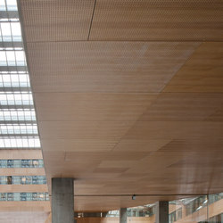 Parklex Walls and Ceilings Acoustic | Natural Oak | Wand Furniere | Parklex