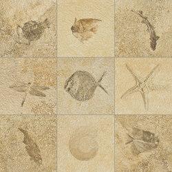 Pangea Pangea Bavaria Fossil | Ceramic tiles | Refin