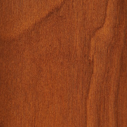 Parklex Skin Finish | Copper | Wood veneers | Parklex