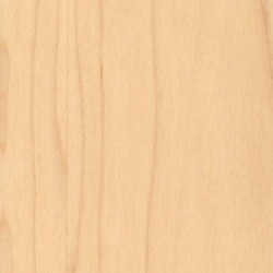 Parklex Skin Finish | Maple | Veneers | Parklex