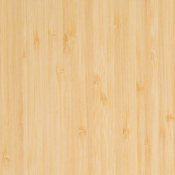 Parklex Skin Finish | Natural Bamboo | Wand Furniere | Parklex