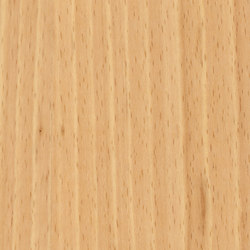 Parklex Skin Finish | Natural Beech | Wand Furniere | Parklex