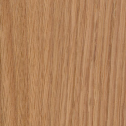 Parklex Skin Finish | Natural Oak | Wand Furniere | Parklex