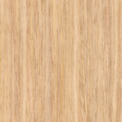Parklex Skin Finish | Reconstituted Oak | Wand Furniere | Parklex