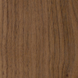 Parklex Skin Finish | Walnut | Wand Furniere | Parklex