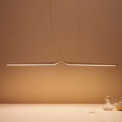 Swan Pendant | General lighting | Tunto Design