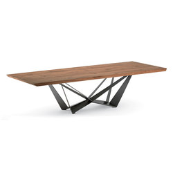 Skorpio Wood | Dining tables | Cattelan Italia
