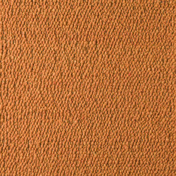 Scrolls 022 | Rugs / Designer rugs | Perletta Carpets