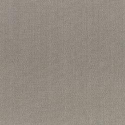 Ducky Canvas | Bufflehead | Outdoor upholstery fabrics | Anzea Textiles