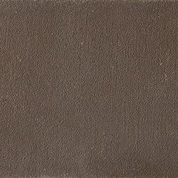 TerraPlus | Wengè | Clay plaster | Matteo Brioni