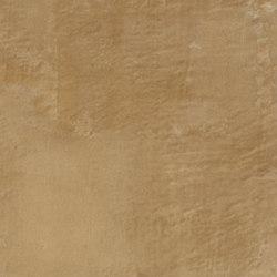 Forma d'Argilla | Zenzero | Intonaci di argilla | Matteo Brioni