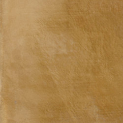 Forma d'Argilla | Senape | Intonaci di argilla | Matteo Brioni