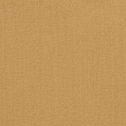 TerraSilk | Senape | Pinturas | Matteo Brioni