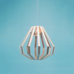 APOLLO 8 command module | General lighting | WOODLABO