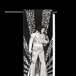 Sliding⎟Elvis Presley, full body | Internal doors | Casali