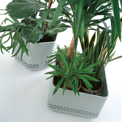 Flower Box | Plant pots | Kriptonite