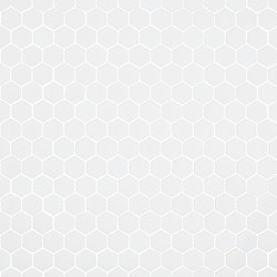 Stone - 568 hexagonal | Glass mosaics | Hisbalit