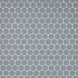 Stone - 570 hexagonal | Glass mosaics | Hisbalit