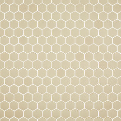 Stone - 571 hexagonal | Glass mosaics | Hisbalit