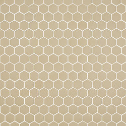 Stone - 572 hexagonal | Glass mosaics | Hisbalit