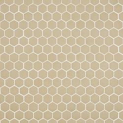 Stone - 572 hexagonal | Mosaicos de vidrio | Hisbalit