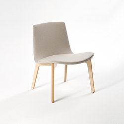Lottus Lounge | Sessel | ENEA