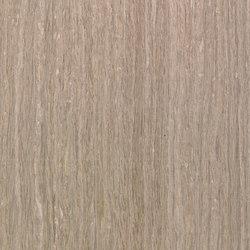 Terra MN.13.497 | Wood flooring | Tabu
