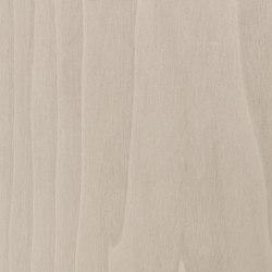 Terra 51.195 | Wood flooring | Tabu