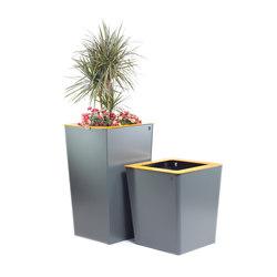 Jardinières carré | Bacs à fleurs / Jardinières | TF URBAN