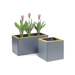 Jardinières rectangular | Macetas plantas / Jardineras | TF URBAN