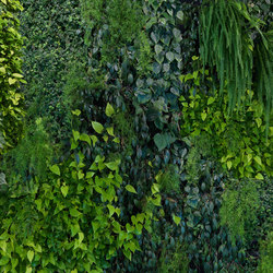Captured Reality | Green Wall | Bespoke | Mr Perswall