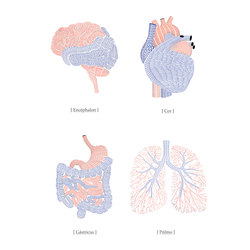 Communication | Organs - Anatomy of the soul | A medida | Mr Perswall