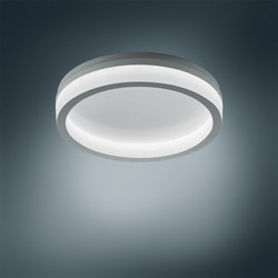 Polaron IQ WD2 | General lighting | Trilux
