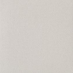 Granito 1 Evo tucson | Piastrelle ceramica | Casalgrande Padana