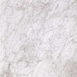 Marmoker bardiglio bianco | Außenfliesen | Casalgrande Padana