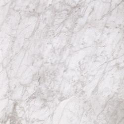 Marmoker bardiglio bianco | Keramik Fliesen | Casalgrande Padana