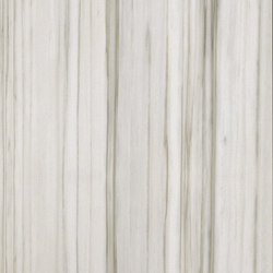 Marmoker zebrino | Facade panels | Casalgrande Padana