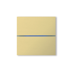 Sentido 2-way brushed brass | KNX-Systems | Basalte