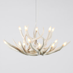 Superordinate Antlers chandelier 10 antlers white | Lustres suspendus | Roll & Hill