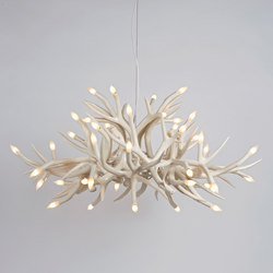 Superordinate Antlers chandelier 24 antlers white | Ceiling suspended chandeliers | Roll & Hill