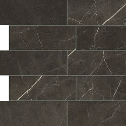 Anima Dekore Composizione L | Graphite | Bodenfliesen | Caesar