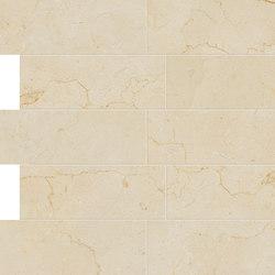 Anima Dekore Composizione L | Marfil | Keramik Fliesen | Caesar