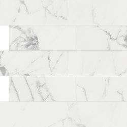 Anima Decori Composizione L | Statuario Venato | Piastrelle/mattonelle per pavimenti | Caesar