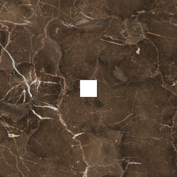 Anima Decors Inserto | Dark Emperador | Floor tiles | Caesar