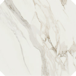 Anima Decori Ottagono | Calacatta Oro | Piastrelle ceramica | Caesar