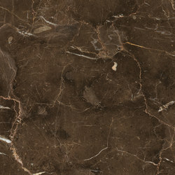 Anima Fondi Lucidato | Dark Emperador | Piastrelle/mattonelle per pavimenti | Caesar