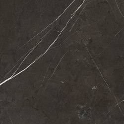 Anima Fondi Naturale | Graphite | Ceramic tiles | Caesar