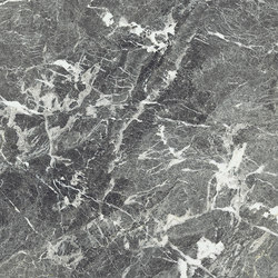 Anima Fondi Naturale | Grey St. Laurent | Ceramic tiles | Caesar