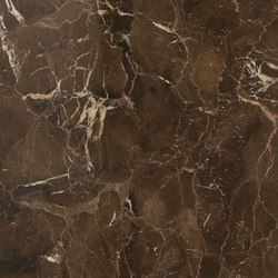 Anima Fuori Gamma Lucidato | Dark Emperador | Ceramic panels | Caesar